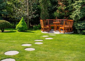 How to Make Your Backyard Look Beautiful on A Budget