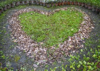 4 Ways to Give Your Landscape Some Valentine's Day Love