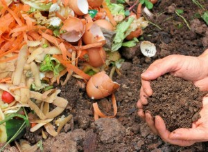 Person's hands holding soil from the ground while composting with vegetables.