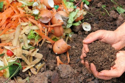 Composting in the Winter - Can it be Done?