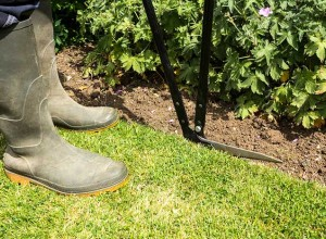 What You Should Do To Your Landscape In The Spring