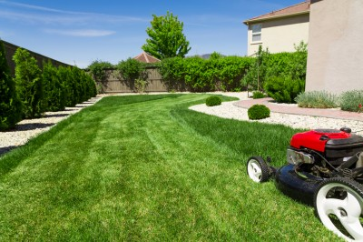 Lawn mower cutting healthy green grass.