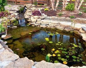 Pond Agitation