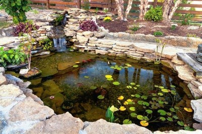 Pond Landscaping Done Right